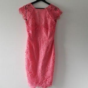 Paper Dolls V-Back Lace Overlay Sheath Dress [NWT]